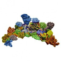 Glass Coral Reef
